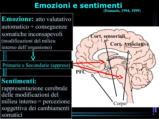 neurobiologia-delle-emozioni-48-638